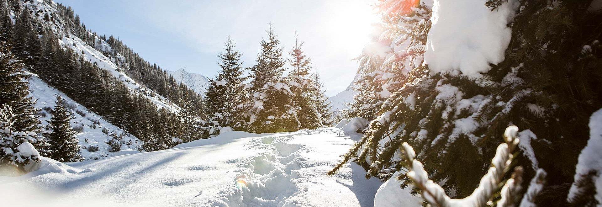 Winterlandschaft Pitztal